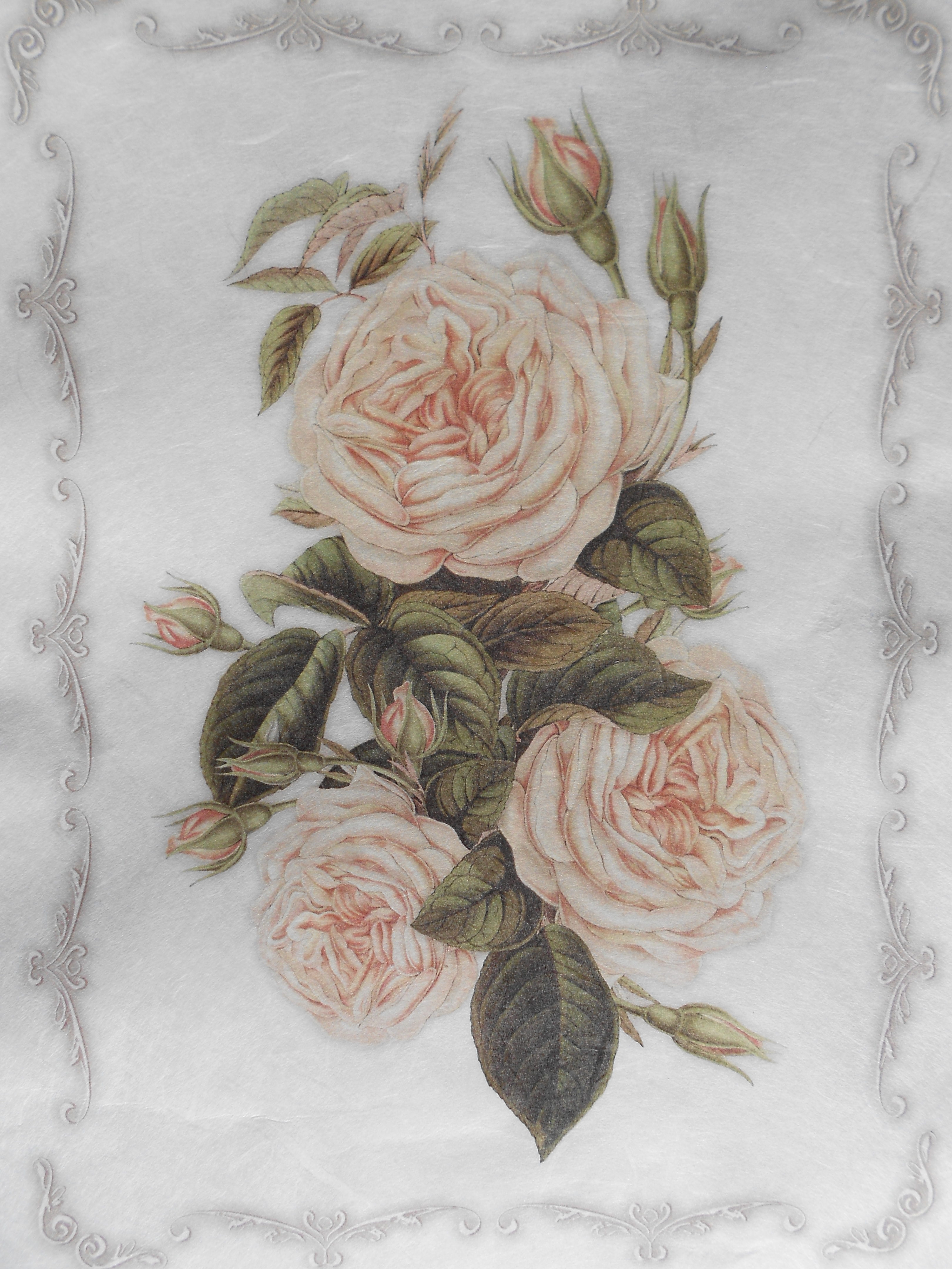 White cabbage roses rice paper for decoupage