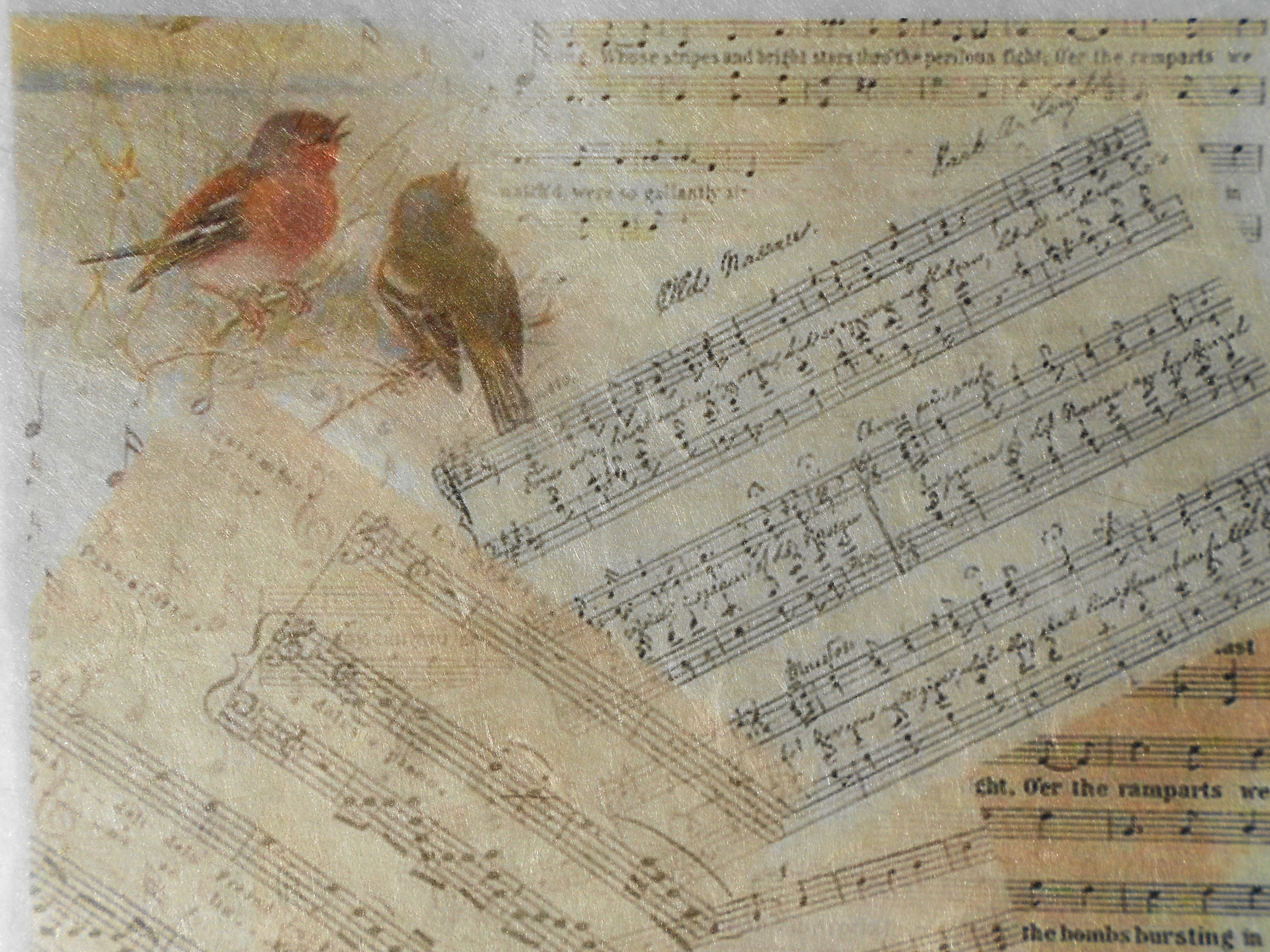 Singing Birds And Music Scores Decoupage Rice Paper