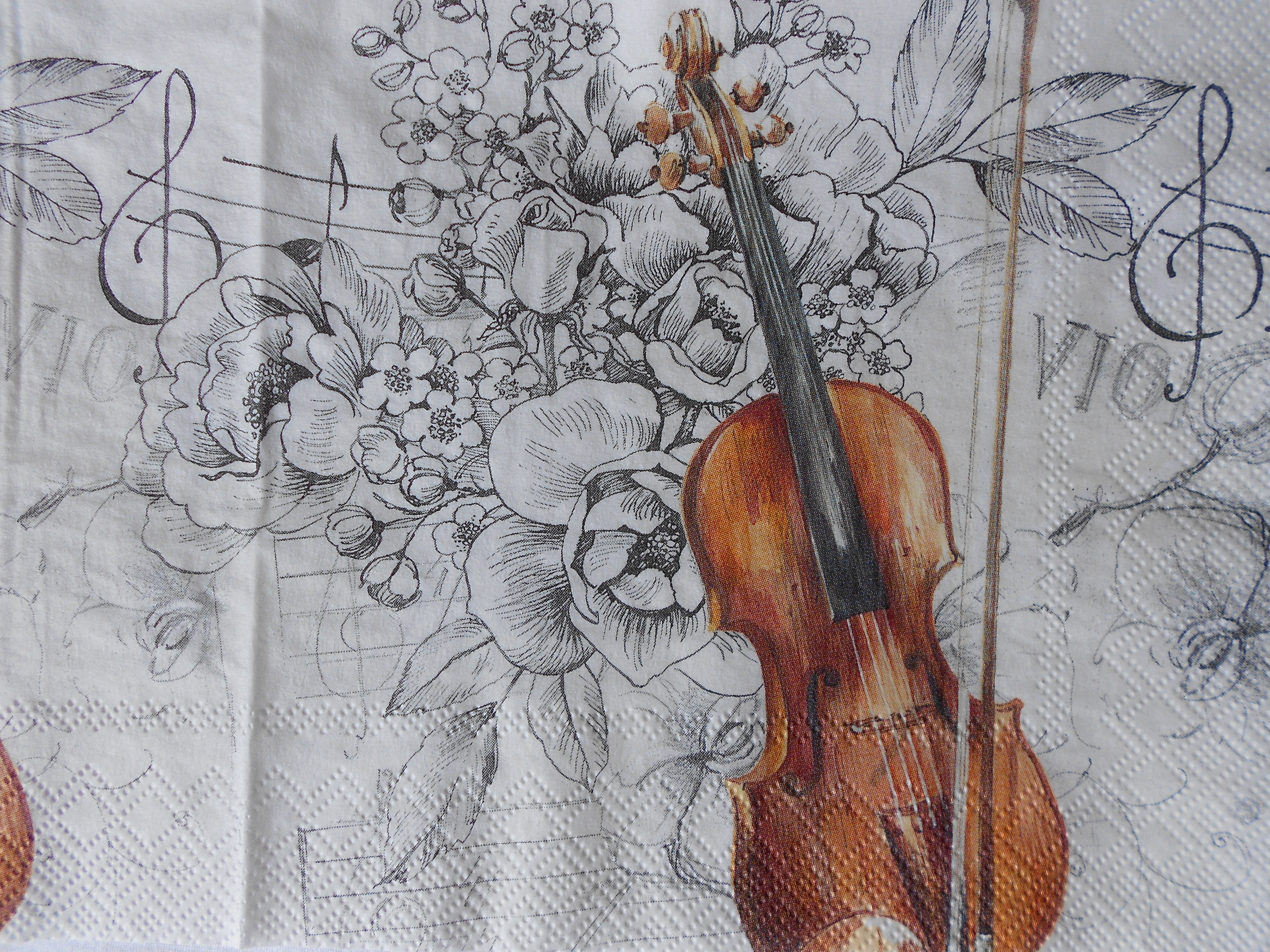 Violin Black And White Flowers Decoupage Napkins